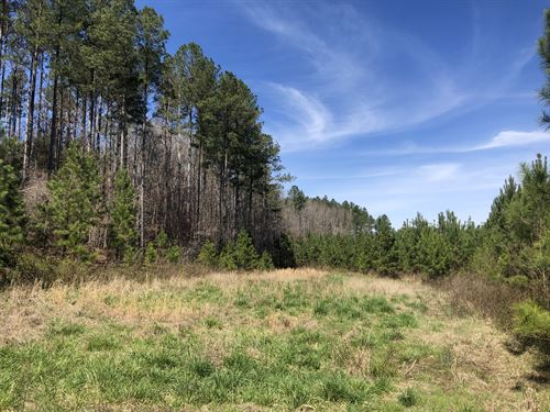Bear Creek : Blythewood : Richland County : South Carolina