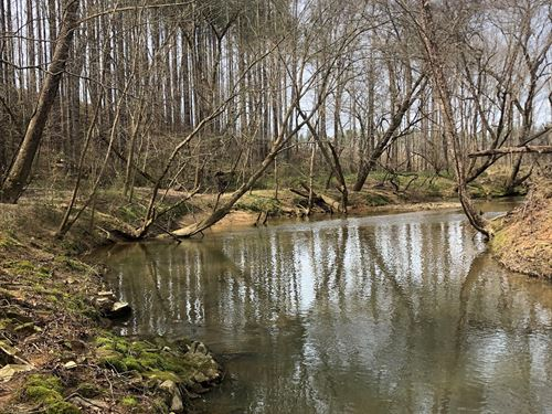 Wildcat Creek 211 : Lancaster : South Carolina