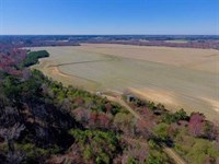 81.75 Acres of Farm And Timber Lan : Lucama : Wilson County : North Carolina