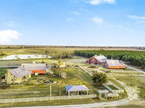 Twin Oaks Farm Wedding & Event : Hawkinsville : Pulaski County : Georgia