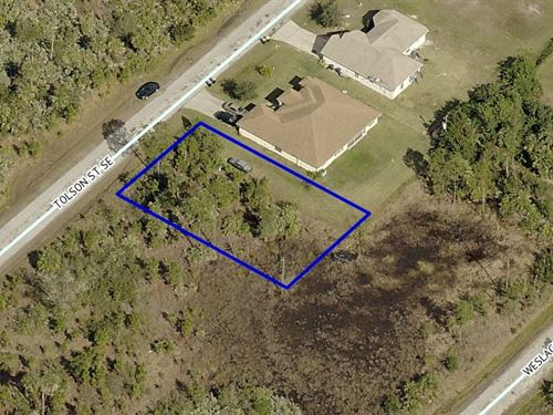 Residential Lot, Se Palm Bay, Fl : Palm Bay : Brevard County : Florida