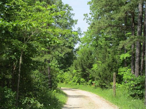 Private Wooded Setting, Hunting : Winona : Shannon County : Missouri