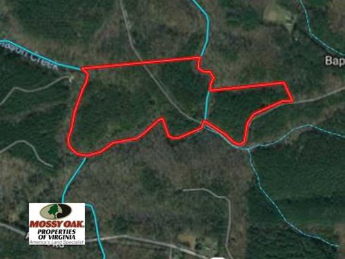53.75 Acres of Hunting And Recreat : Kenbridge : Lunenburg County : Virginia