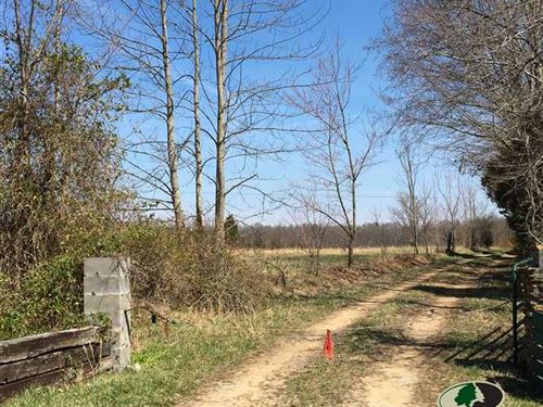 85 Acres Of Land For Sale In Ky : Columbia : Adair County : Kentucky