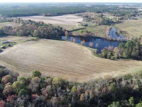 Farm With a Pond For Sale in Appli : Baxley : Appling County : Georgia