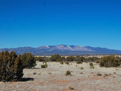 Abo Ranches Tract 19 : Mountainair : Torrance County : New Mexico