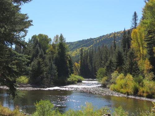 Colorado Riverfront Fly Fishing Mtn : Antonito : Conejos County : Colorado