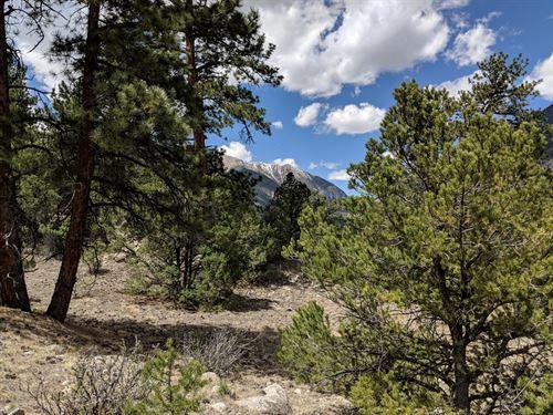 Buena Vista CO Homesite MT : Nathrop : Chaffee County : Colorado