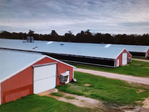 Broiler Houses For Sale : Grady : Lincoln County : Arkansas