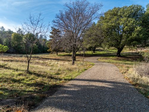 Pine Hills Acreage, 2 Parcels : Julian : San Diego County : California