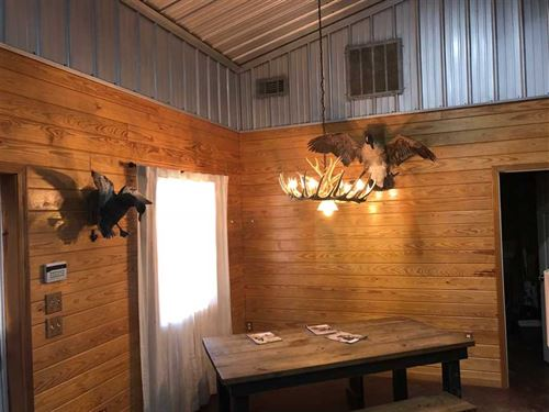 Alicia 141 Deer And Ducks : Alicia : Lawrence County : Arkansas