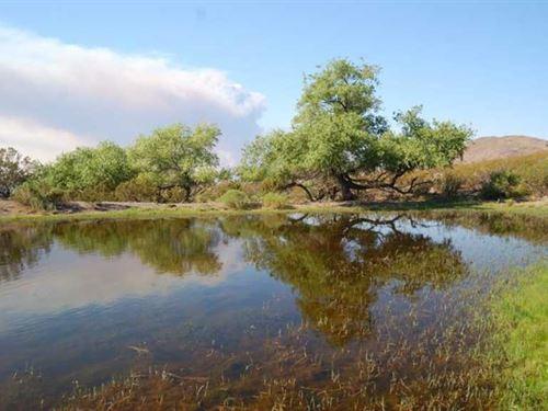 Willow Springs Ranch Lot 42A : San Antonio : Socorro County : New Mexico