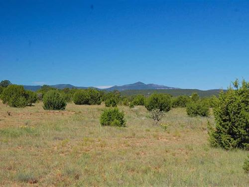 Double L Ranch : Estancia : Torrance County : New Mexico