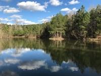 75 Acres, Fishing, Hunting : Pinson : Jefferson County : Alabama
