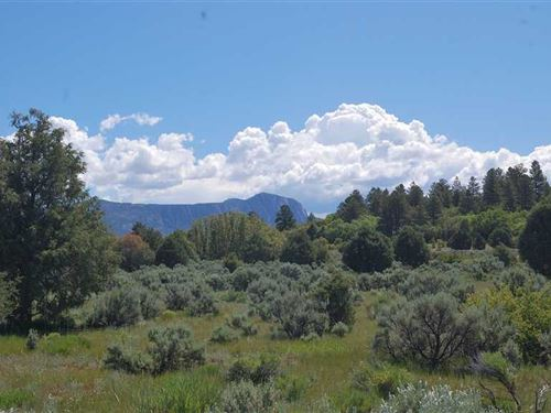 Northern NM Cabin And Home Sites : Tierra Amarilla : Rio Arriba County : New Mexico