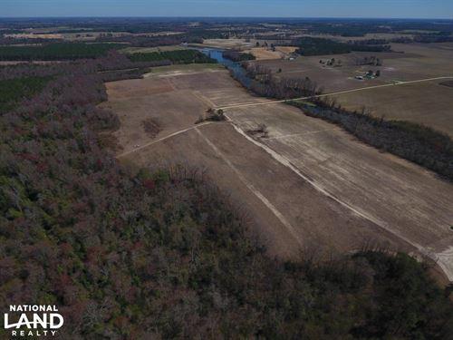 Greene County Hunting/Homesite Trac : Snow Hill : Greene County : North Carolina