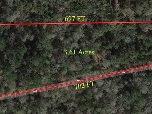 Picturesque 3.61 Acres : Buna : Jasper County : Texas