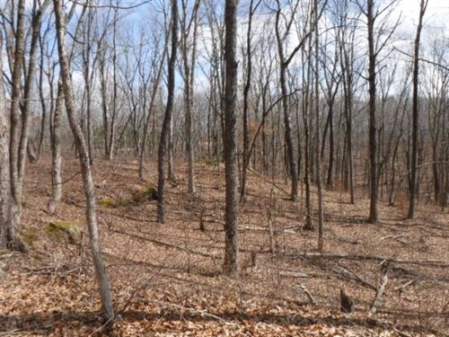 8.71Ac,Cave, Rock Formations, Creek : Crawford : Overton County : Tennessee