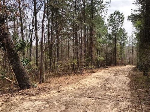 Excellent 27 Acre Building Spot Gu : Guin : Marion County : Alabama