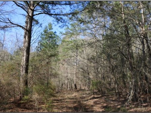 28.5 Acres In Neshoba County In Phi : Philadelphia : Neshoba County : Mississippi