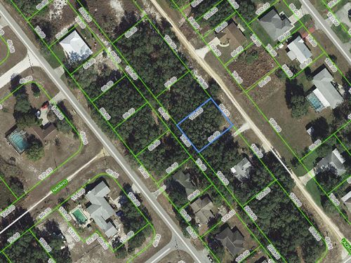 Lot, Near Lake Olivia, Fl : Avon Park : Highlands County : Florida