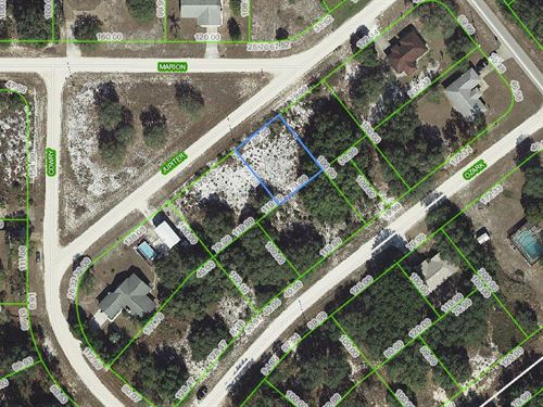 Great Lot, Avon Park Lakes, Fl : Avon Park : Highlands County : Florida