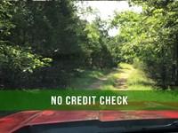 $500 Down On 4 Acres At Lake : Cedarcreek : Taney County : Missouri