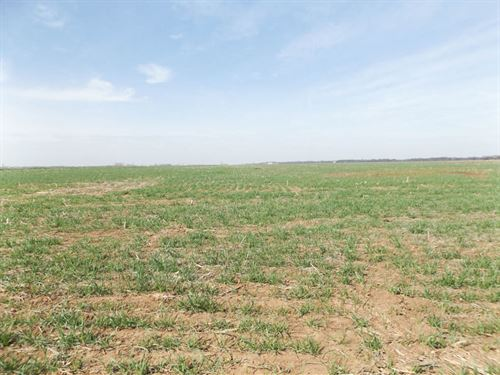 257 Acres Cropland, Hunt & Minerals : Medford : Grant County : Oklahoma