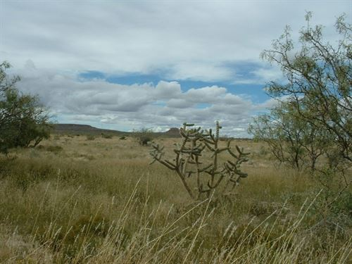 Great Hunting, 100 Acs Only $688/Mo : Sierra Blanca : Hudspeth County : Texas