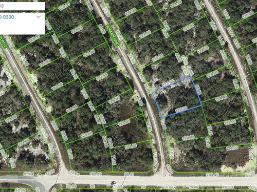 Land For Sale, Lake Placid, Fl : Lake Placid : Highlands County : Florida