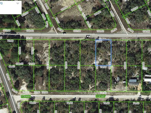 Lot For Home, Lake Placid, Fl : Lake Placid : Highlands County : Florida