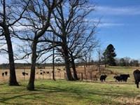 Shiloh Farms of Union Parish, 355 : Bernice : Union Parish : Louisiana