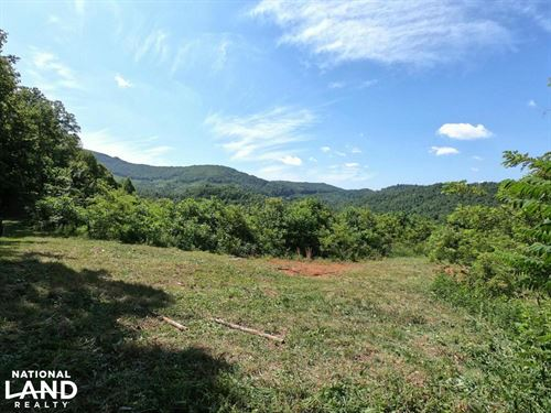 Large Rolling Clear-Cut Tract : Hendersonville : Henderson County : North Carolina