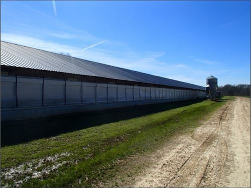 30 Acres In Winston County In Louis : Louisville : Winston County : Mississippi