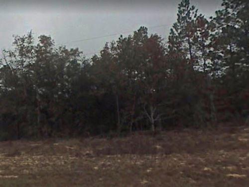 Jackson County, Fl $21,500 : Marianna : Jackson County : Florida