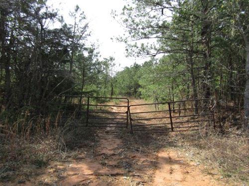 21 Acres In Clarke County In Meridi : Meridian : Clarke County : Mississippi