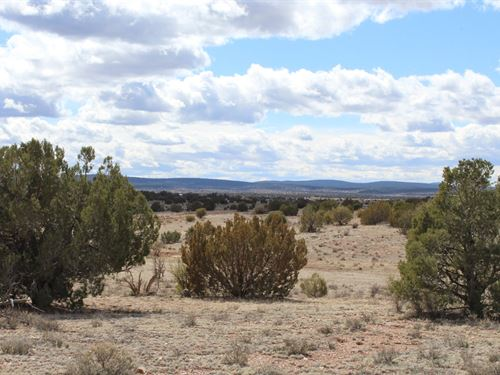 10 Affordable Acres in Northern AZ : Seligman : Yavapai County : Arizona