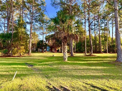 Two Lots Suwannee Florida : Suwannee : Dixie County : Florida