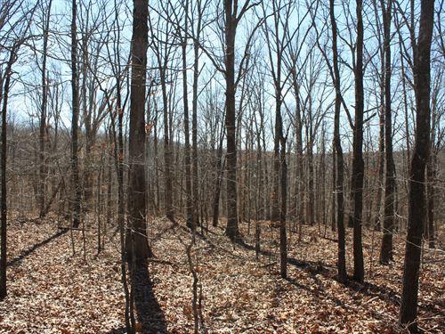 Wappapello MO Land 12 Acres : Wappapello : Wayne County : Missouri