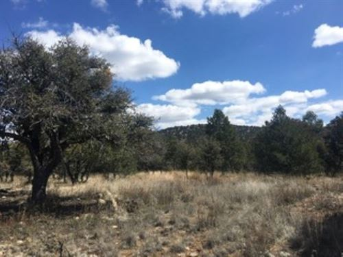 5 Acre Lot SW NM Close to Gila : Silver City : Grant County : New Mexico