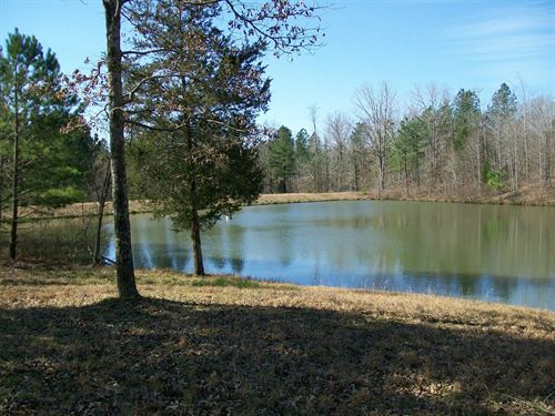 Recreation Land For Sale : Medon : Hardeman County : Tennessee