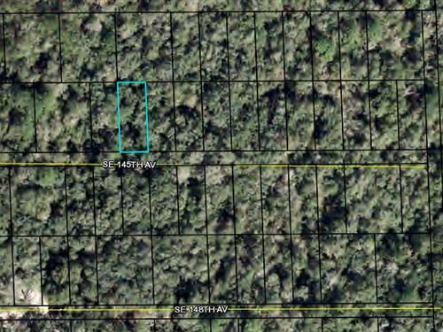 Lot For Home, Dixie County, Fl : Dixie County : Dixie County : Florida