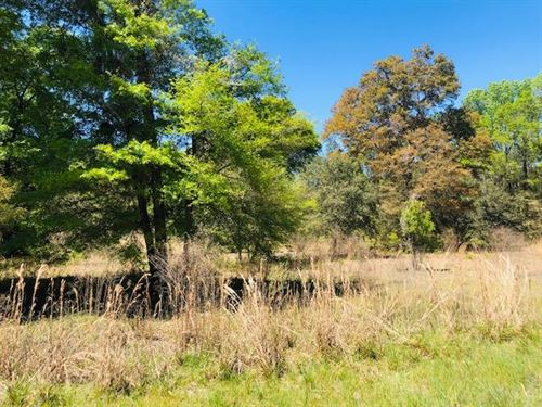 3 Acre Lot 777565 : Old Town : Dixie County : Florida