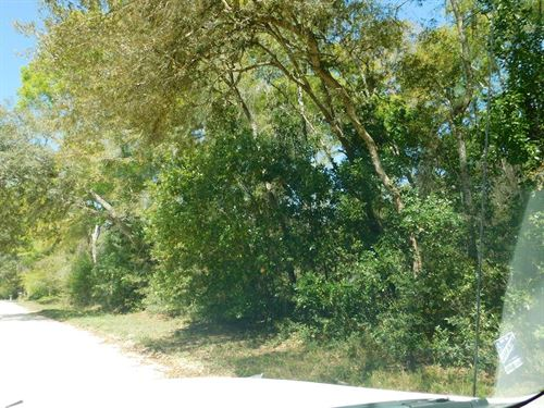 .88 Acre Lot 777588 : Fanning Springs : Levy County : Florida