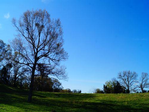 Argyle Farm 214 : Bentonia : Yazoo County : Mississippi
