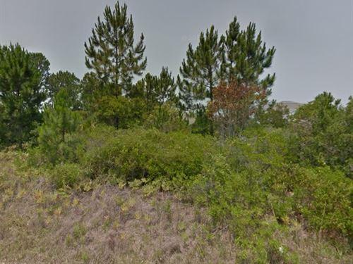 Flagler County, Fl $42,000 Neg : Palm Coast : Flagler County : Florida