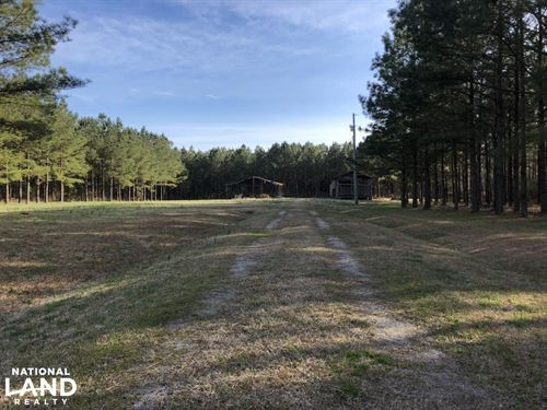 Enfield Hunting / Homesite / Timber : Enfield : Halifax County : North Carolina
