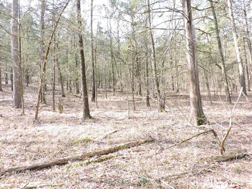 Perfect Location to Build Your : Waldron : Scott County : Arkansas