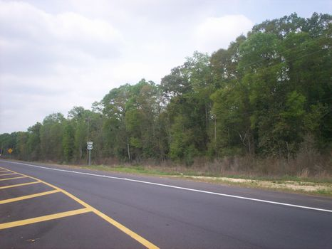 600 Acres on Hwy 84 will Divide : Opp  : Covington County : Alabama