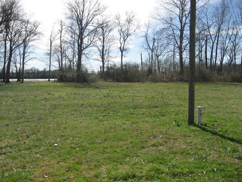 Tennessee River Front Building Lot : Crump : Hardin County : Tennessee